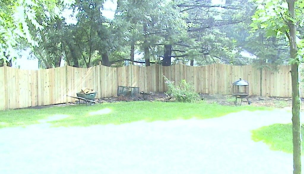 Gary's fence 1