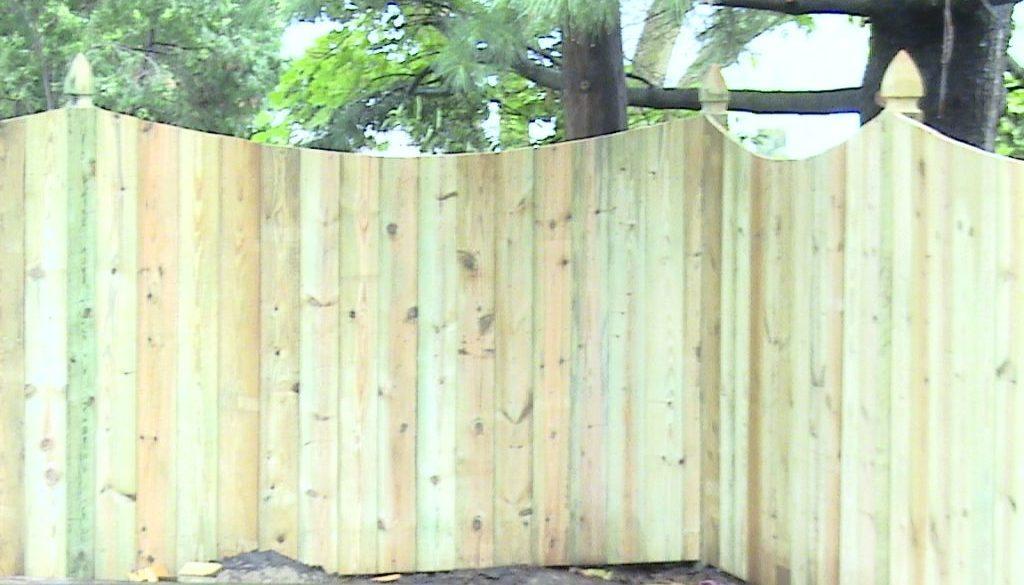 Gary's fence 4